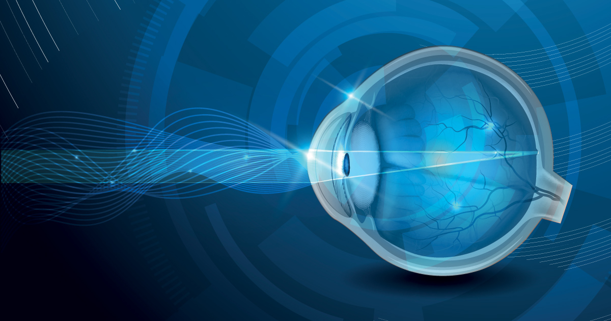 Human Eye Anatomy Parts Of The Eye Explained