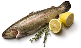 Eating fish may help prevent macular degeneration.