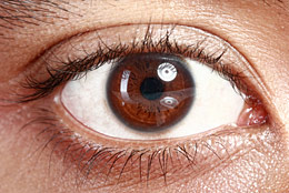 Closeup of brown eye.