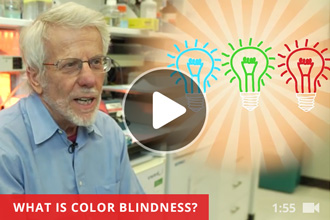 Video where a doctor answers children's questions about colorblindness.
